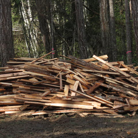 The off cut pile