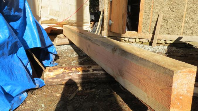 Rolling a joist into my tent shop